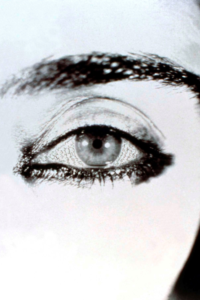 Fig.-2-Shirin-Neshat-Offered-Eyes